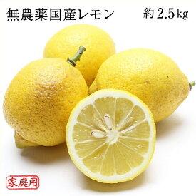 無農薬 国産レモン 岡山県牛窓産 約2.5kg ご家庭用 送料無料
