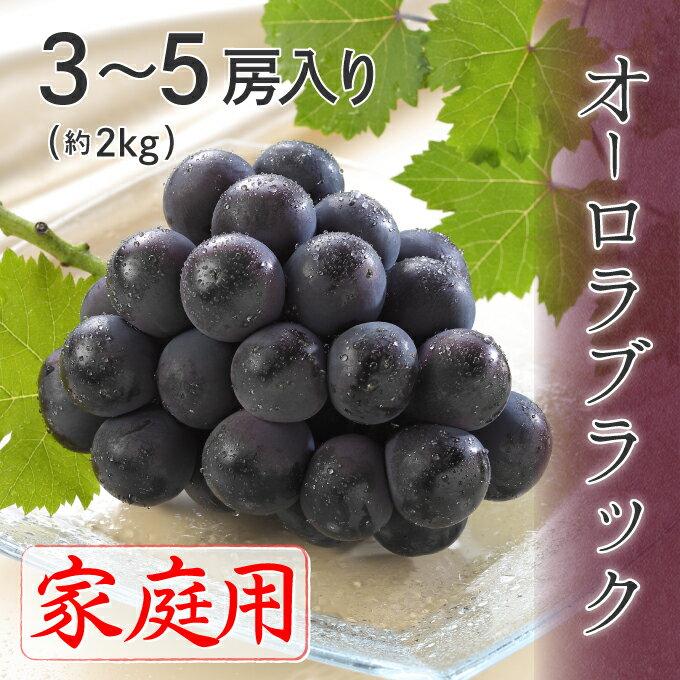 (7月上旬より発送) 岡山県特産 オーロラブラック 家庭用 3房〜5房入り 2kg