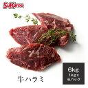 【送料無料】冷凍牛ハラミ 約6kg(約1kg×5〜6パック)筋引き ハンギングテンダー サガリ ハラミ さがり ハラミステーキ グレインフェッドビーフ 穀物肥育 焼肉 BBQ ステーキ steak 赤