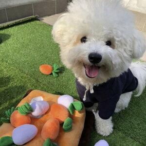 【おまけ付】にんじんノーズワーク ペット 犬 知育 ニンジン 大根 畑 ノーズワーク おもちゃ