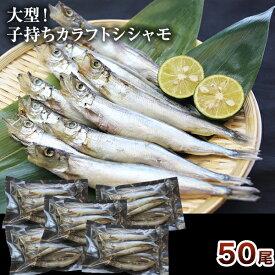 50尾 大型子持ちカラフトシシャモ(10尾×5パック)