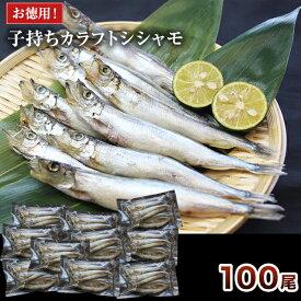 100尾【お徳用】大型子持ちカラフトシシャモ (10尾×10パック)