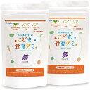 幼児 栄養補助サプリ こども食育グミ 2袋 偏食 少食 野菜嫌い 植物性乳酸菌(お米由来K-2乳酸菌)216億 ビタミンD キ…