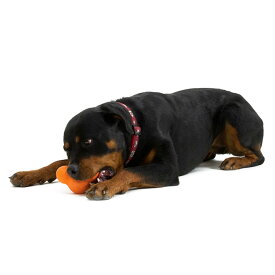 タックスSサイズ|スマイヌ/犬用グッズ