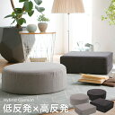 [クーポンで5%OFF! 1/11 18:00-1/15 0:59] クッションスツール クッション 座布団 おしゃれ 低反発 高反発 椅子 円形 円 長方形 丸型 床 大きい 大きめ 厚い ソファー