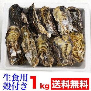 兵庫県播州室津産 生食用 殻つき牡蠣1kg
