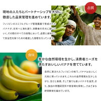甘熟王ゴールドプレミアム3パックスミフル高級バナナお中元お歳暮プレゼントフルーツ厳選