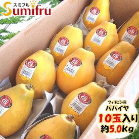 厳選 パパイヤ 1ケース 10玉 または 12玉 フィリピン産 約5kg 大人気 トロピカルフルーツ スミフル sumifru こだわり