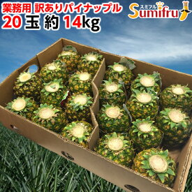 業務用 訳あり パイナップル 小玉 20玉 約14kg フィリピン産 パイン スミフル sumifru 送料無料 食べきりサイズ