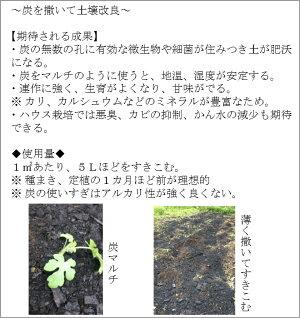 炭で土壌改良