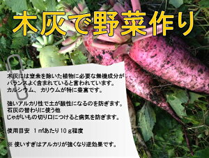 野菜作りに木灰を活用