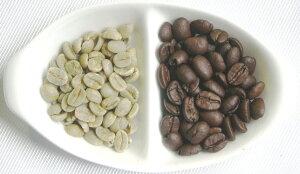 フレンチ・ブレンド(アイスコーヒーやエスプレッソ用珈琲豆)(500g)送料無料・クリックポスト