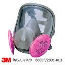 ※欠品中※ 防塵マスク兼防毒マスク 3M(スリーエム) 6000F/2091-RL3全面体 アスベスト・ダイオキシン防塵対応