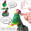 楽しくおしゃべりする小鳥  ものまねバード おしゃべりバード オオムちゃん  オオム 音センサー 【ペン立て …