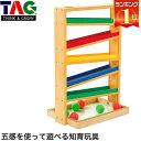 TAG 注意力と動きの予測をさせるトラッカー TGSR3 【あす楽対応】 送料無料 知育玩具 知育 おもちゃ 木製 0歳 1歳 1歳…