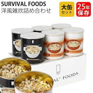 保存食 25年保存 サバイバルフーズ 洋風雑炊詰め合わせ 大缶 6缶セット 送料無料