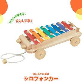 積み木 学習トイ ブロック 積み木 エドインター 森のあそび道具 シロフォンカー 4941746700075(知育玩具) 誕生日 出産祝い 赤ちゃん ベビー キッズ ブロック 木製玩具 プルトーイ プルトイ 1歳 2歳