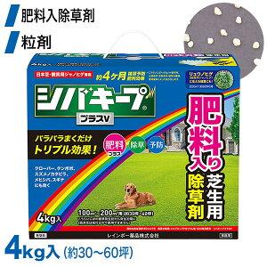 芝生 除草剤 シバキーププラスV 4kg レインボー薬品 土壌処理型 【あす楽対応】 4903471101893