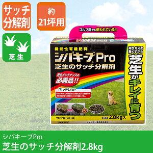 芝生 除草剤 シバキープPro サッチ分解剤 2.8kg 4903471100582【あす楽対応】