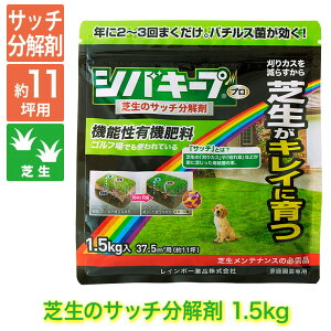 芝生 肥料 シバキープPro サッチ分解剤 1.5kg 4903471100575【あす楽対応】