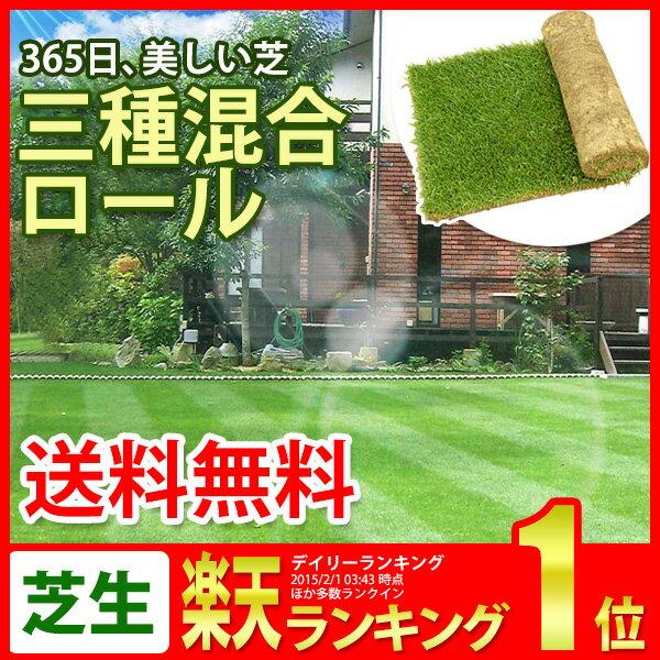 芝生 三種混合ロール巻芝 送料無料 (芝 通販)