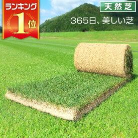 芝生 天然芝 三種混合ロール巻芝 送料無料 (芝生 通販)