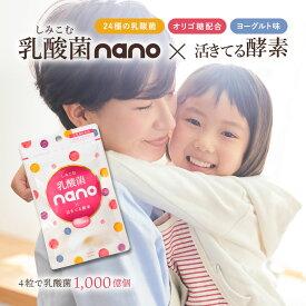 乳酸菌nano×活きてる酵素 120粒(約30日分)ナノ型乳酸菌チュアブル 【4粒ヨーグルト1kg分】【出荷目安:ご注文後1〜2週間】