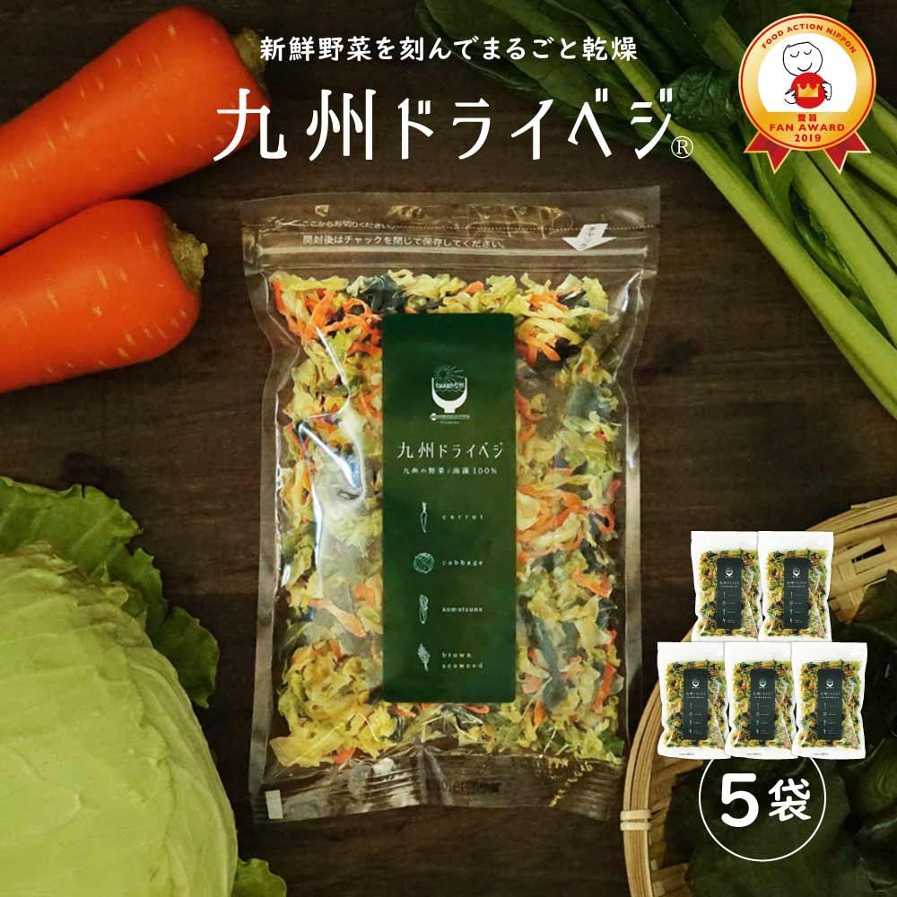 国産 乾燥野菜 ミックス 九州ドライベジ 100g×5袋セット(お湯で戻して約2500g) ゆうパケット(ポスト投函)・代引不可 <出荷目安:ご注文後1〜2週間>