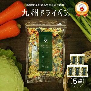 送料無料 国産 乾燥野菜 ミックス 九州ドライベジ 100g×5袋セット(お湯で戻して約2500g) ゆうパケット(ポスト投函)・代引不可【出荷目安:ご注文後1〜2週間】