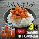 Ikantekimuchi3