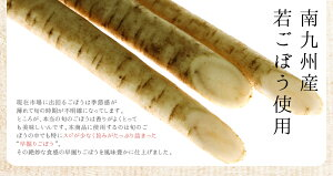 国産素材のサッパリ『梅酢ごぼう』【メール便・代引不可】