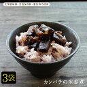 Kanpachi 3set