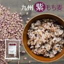 【ポイント10倍キャンペーン】『九州紫もち麦』1kg×1袋ダイエット・健康管理に!【国産(九州産)もち麦】水溶性食物…