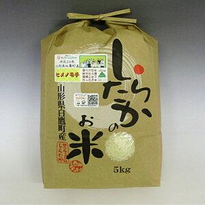 【新米】【農家直送】【令和2年産】ヒメノモチ 玄米20kg(10kg×2袋) 【山形県白鷹産】
