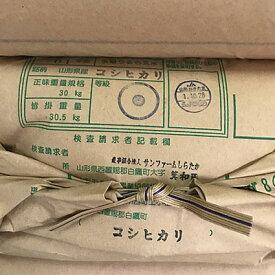 【令和元年産】コシヒカリ 玄米30Kg【農家直送】【10kgずつに小分け致します】