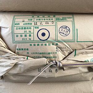 【令和2年産】【新米】【農家直送】はえぬき玄米30kg!【10kgずつに小分け致します】