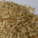 【新米つや姫販売中】【農家直送】【令和2年産】山形から日本の美味しい品種 特別栽培米【つや姫】玄米10kg