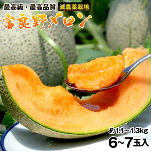 北海道富良野産メロン1.1kg〜1.3kg×6〜7玉(約8kg)お中元 ご贈答用正規メロン【送料無料】特別栽培農産物 ギフト ふらの 赤肉 めろん