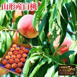 山形産白桃 約5kg(18〜24玉前後)小〜中玉 ご家庭用JAさくらんぼひがしね共選光センサー選別で厳選した白桃!桃 もも 白桃 モモ