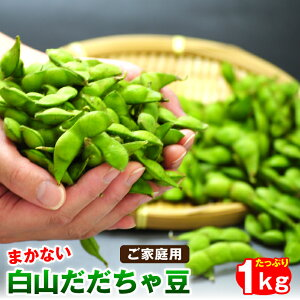 訳あり白山だだちゃ豆1kg ご家庭用山形県鶴岡市産 だだ茶豆 枝豆 えだまめ 送料無料※発送は8月中旬頃から順次発送。※収穫の状況に応じて発送日が変動する場合がございます。