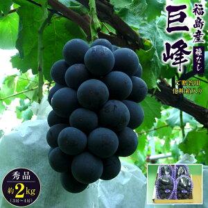 種無し巨峰 秀品 約2kg(3房〜4房)福島産ご贈答用品質/化粧箱入り 1房約500g〜700g前後【送料無料】葡萄、ぶどう、ブドウ