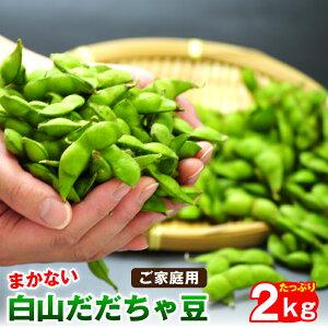 訳あり白山だだちゃ豆2kg ご家庭用山形県鶴岡市産 だだ茶豆 枝豆 えだまめ 送料無料※発送は8月中旬頃から順次発送。※収穫の状況に応じて発送日が変動する場合がございます。