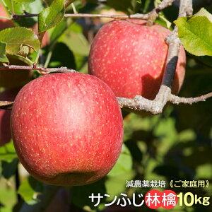 ご家庭用 信州小布施産 サンふじ林檎10kg 送料無料 発送は12月20日頃まで。減農薬栽培、ご家庭用、サンふじ、ふじ、林檎、リンゴ、りんご、蜜