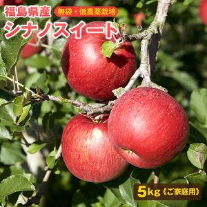 福島産シナノスイート ご家庭用5kg(中〜大玉 12〜16玉)【送料無料】訳あり シナノスイート 林檎 リンゴ りんご