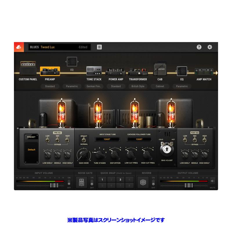 POSITIVE GRID BIAS AMP 2.0 STANDARD