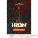 UJAM VIRTUAL GUITARIST IRON 2 ダウンロード版 【特価品!】