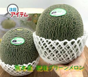 熊本県産 肥後グリーンメロン 2玉入り化粧箱 送料無料