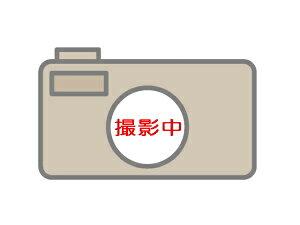 プチプチ袋(粒内) 防錆タイプd40L防錆L(粒径10mm・粒高3.5mm)200×300 5000枚