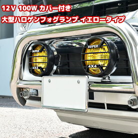 12V用 100W カバー付き大型ハロゲンフォグランプ イエロータイプ 2個セット メッキ仕様 スイッチ配線付き