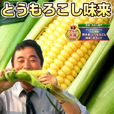 とうもろこし 北海道産 味来(みらい)約4kg(11本〜15本) 送料無料 朝採りトウモロコシ【8月下旬頃より順次出荷予定】【早割7月限定価格】